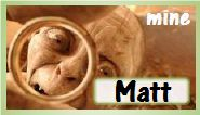 mine_matt
